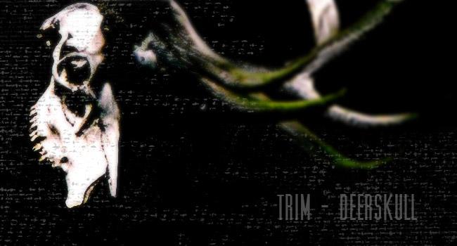 TRIM – Deerskull